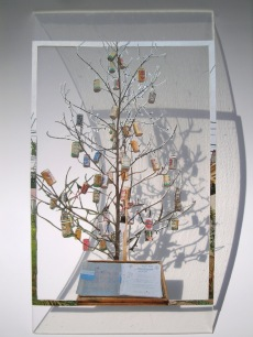 비어트리 / A Beer Tree