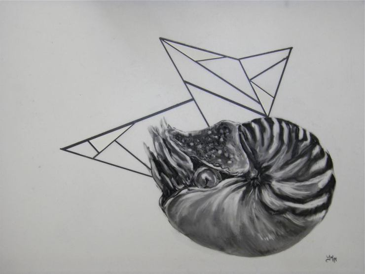 Chapter 5, 2014, charcoal on Mylar (displayed with DJAC)